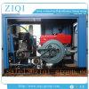 販売のための携帯用ディーゼル電力源ねじエンジンそして新しい条件の空気圧縮機