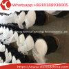 Hoher Reinheitsgradbenzocaine-Puder-lokales Betäubungsmittel von China CAS 94-09-7