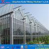 Casa verde da película profissional de China para a pimenta