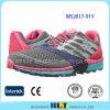 Chaussures de sport de qualité de vente en gros de modèle de type de mode