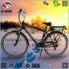 Vélo de montagne électrique de bâti d'alliage
