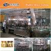 Hochgeschwindigkeitsglasflaschen-Saft-Warmeinfüllen-Zeile