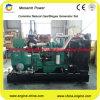 Tipo silencioso conjunto de generador del gas para el biogás/el gas natural
