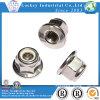 Écrou en nylon de bride de l'acier inoxydable A4-70 avec la dentelure, par DIN6926