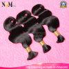 卸し売り製品の自然な人間の毛髪のインドの毛の大きさ