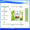 Máquina de enchimento automática da água de engarrafamento (CGF)