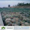 Rete metallica rivestita del PVC Gabion/della fabbrica 3X1X1m della Cina Gabion (XM3-2)