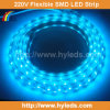 Indicatore luminoso di nastro flessibile di SMD LED (HY-HV5050-48-B)