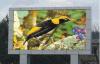 광고를 위한 옥외 풀 컬러 방수 P8 HD LED 게시판