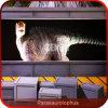 Animatronic Parasaurolophus 공급자 공룡 운동장 장비