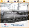Polypropylene de alta elasticidade Geogrid biaxial da força