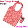 Foldable de nylon Bag para Shopping Bag