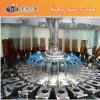Embotelladora de Hy-Relleno de la cerveza de barril de botella de cristal