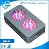 O diodo emissor de luz Elevado-Eficiente modular cresce a iluminação