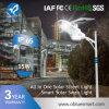 Bluesmart Qualitäts-Solarstraßenlaternealles in einem