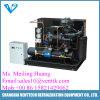 Tipo de caixa de baixa temperatura, unidade de condensação refrigerada a ar