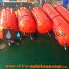 De Zakken van het Water van de Test van de Doorgang van pvc (GW6000)