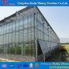 Invernadero에서 토마토를 위한 중국 제조자 플레스틱 필름 갱도 온실