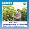 Chambre verte de film de culture hydroponique de Multispan agricole pour le concombre