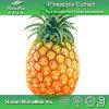 Выдержка Comosus Ananas 100% естественная (коэффициент: 4:1 ~20: 1)