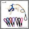 Produits pour animaux de compagnie Set de harnais à laisse de nylon durable (SPH7019-1)