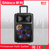 Shinco電池が付いているプラスチックポータブルDJのスピーカー普及した12インチのBluetoothの