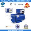 Generador del alternador de la venta 240V 230V de la fábrica