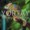 Pigmento de la perla del camaleón para la impresión de falsificación anti de la nota