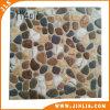 建築材料のスリップ防止無作法な浴室の陶磁器の床タイル