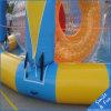 Zwembad van 10*8m voor de Boten van de Peddel