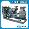 Gerador da energia eléctrica de motor Diesel 250kw/313kVA de Shangchai da central energética