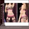 Women sexy Bikini Bra Set Lingerie con Garter (5440)