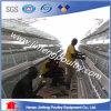 Cage de batterie de couche de poulet de 3 rangées pour la ferme avicole de l'Afrique
