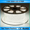 Indicatore luminoso di striscia di alta qualità SMD 5050 110V LED