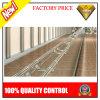Corrimão de aço inoxidável de alta qualidade para o projeto público