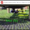 Esteiras de borracha de Grasss do anti Matting de borracha oco de borracha do enxerto