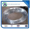 직업적인 Produce Electro 또는 최신 Dipped Galvanzied Iron Wire