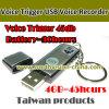 중국 도매 USB 디스크에 의하여 숨겨지는 기록병 (U04)
