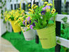 庭の装飾の鉄の牧歌的なバルコニーの鍋プランター金属のバケツの花のホールダー