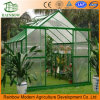 con la serra d'acciaio del magazzino PC/Film della costruzione di alta qualità per i fiori/verdura