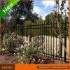 أسود أمن فولاذ أنبوبيّ حديقة يسيّج