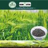 Il fertilizzante organico basato carbonio di Kingeta riduce la diffusione di malattia