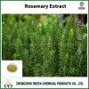 Естественный противоокислительн порошок выдержки Розмари ингридиента с кислотой Rosmarinic и кислотой Carnosic
