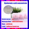 높은 순수성 나트륨 Hyaluronate 분말은 제조한다