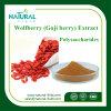 熱い販売のWolfberryのエキスの粉