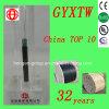 GYXTW-24 Núcleo Tubo Central Exterior Cable de fibra óptica con Acero Paralelo de Modo Único