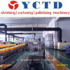 Sleeve automático Sealing & Shrink Wrapping Machine para Tapes (YCTD)