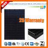 255W 125*125 Black Solar Mono-Crystalline Panel
