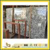 Galettes de marbre blanches Polished de Blanco Potiguar pour la partie supérieure du comptoir/dessus de vanité
