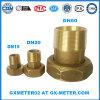 Dn50 (2'' pulgadas) Medidor de agua de latón de latón de conector para el contador de agua